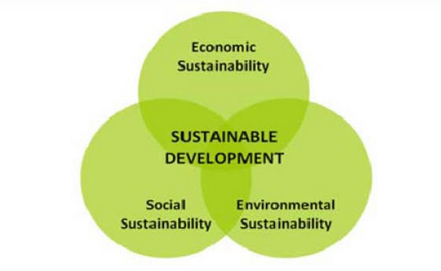 an analysis of the concept of sustainable development in 1987 The concept of sustainable development: definition and defining  introduction in 1987, the bruntland commission  processes in order to move towards development.